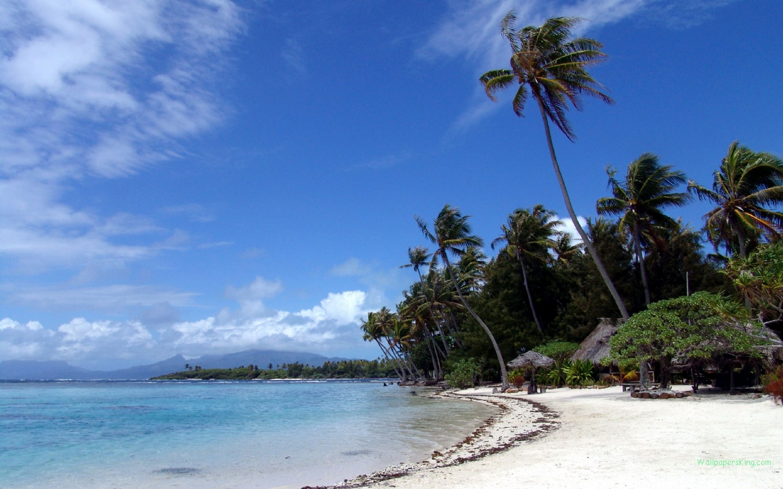 马尔代夫海滩风光